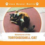 Adventures of the Tortoiseshell Cat