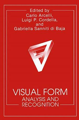 Visual Form: Analysis and Recognition