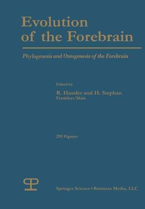 Evolution of the Forebrain: Phylogenesis and Ontogenesis of the Forebrain