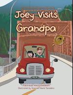 Joey Visits Grandpa af Patricia Nichvolodoff