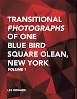 Transitional Photographs of One Blue Bird Square Olean, New York: Volume 1