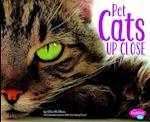 Pet Cats Up Close (Pebble Plus)