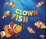 Clown Fish (Pebble Plus)