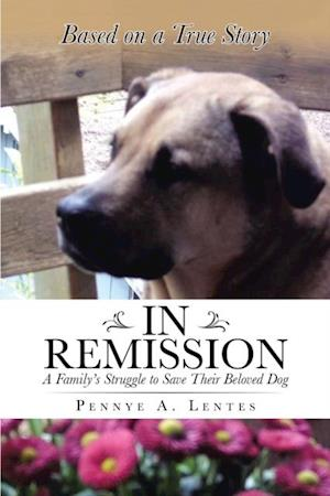 In Remission