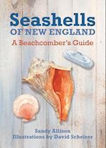 Seashells of New England af J. Duane Sept