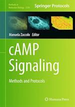 Camp Signaling af Manuela Zaccolo