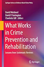 What Works in Crime Prevention and Rehabilitation : Lessons from Systematic Reviews