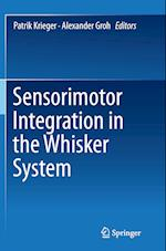 Sensorimotor Integration in the Whisker System