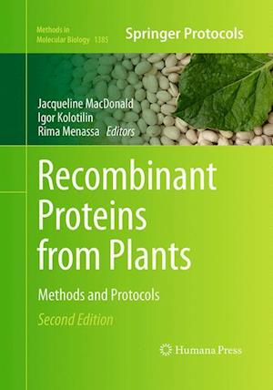 Bog, hæftet Recombinant Proteins from Plants : Methods and Protocols