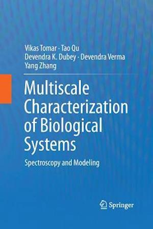 Multiscale Characterization of Biological Systems : Spectroscopy and Modeling