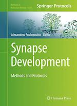 Synapse Development (METHODS IN MOLECULAR BIOLOGY, nr. 1538)