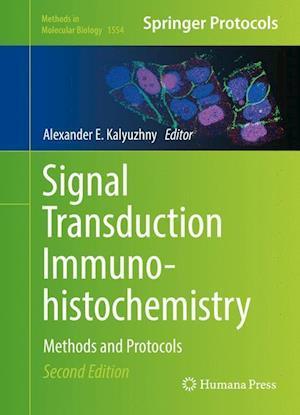 Bog, hardback Signal Transduction Immunohistochemistry af Alexander E. Kalyuzhny