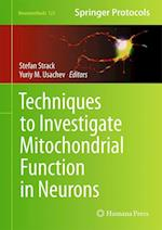 Techniques to Investigate Mitochondrial Function in Neurons