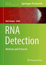 RNA Detection (METHODS IN MOLECULAR BIOLOGY, nr. 1649)
