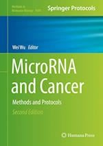 MicroRNA and Cancer : Methods and Protocols