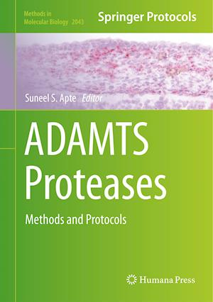 ADAMTS Proteases