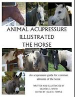 Animal Acupressure Illustrated the Horse