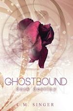 Ghostbound 3