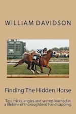 Finding the Hidden Horse