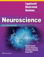 Lippincott Illustrated Reviews Neuroscience (Lippincott Illustrated Reviews)