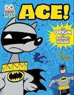 Ace (DC Super Pets Origin Stories)