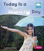 Today Is a Rainy Day (What Is the Weather Today)