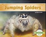 Jumping Spiders (Spiders)
