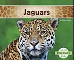 Jaguars (Big Cats)