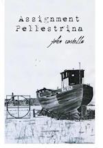 Assignment Pellestrina