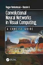 Convolutional Neural Networks in Visual Computing (Data Enabled Engineering)