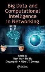 Big Data and Computational Intelligence in Networking