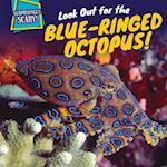 Look Out for the Blue-Ringed Octopus! (Surprisingly Scary)