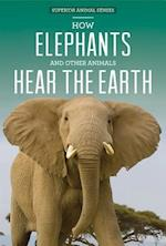 How Elephants and Other Animals Hear the Earth af Caitie Mcaneney