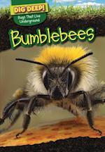 Bumblebees af Omar Stone