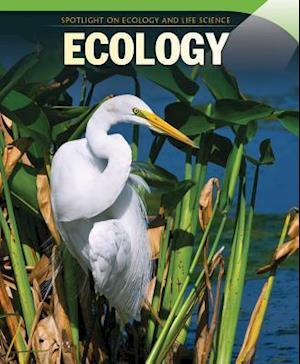 Bog, paperback Ecology af Omar Stone