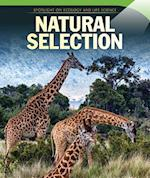 Natural Selection (Spotlight on Ecology and Life Science)