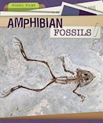 Amphibian Fossils (Fossil Files)
