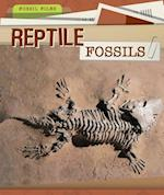 Reptile Fossils (Fossil Files)