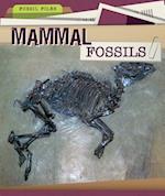 Mammal Fossils (Fossil Files)