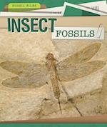 Insect Fossils (Fossil Files)