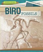 Bird Fossils (Fossil Files)