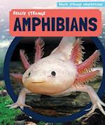 Really Strange Amphibians (Really Strange Adaptations)