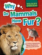 Why Do Mammals Have Fur? (WIldlife Wonders)
