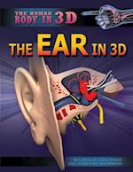The Ear in 3D