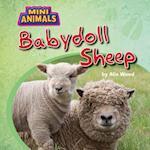 Babydoll Sheep (Mini Animals)