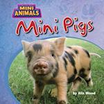 Mini Pigs (Mini Animals)