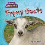 Pygmy Goats (Mini Animals)