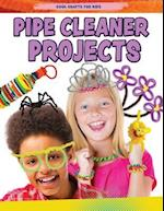 Pipe Cleaner Projects (Cool Crafts for Kids)
