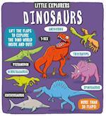Dinosaurs (Little Explorers)
