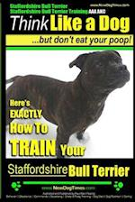 Staffordshire Bull Terrier, Staffordshire Bull Terrier Training AAA Akc af MR Paul Allen Pearce, Paul Allen Pearce